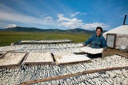 Mông Cổ - vùng đất của những đồi thảo nguyên với nhiều đặc sản trứ danh