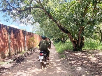 Trích xuất camera, tìm bé trai 4 tuổi mất tích gần núi Chứa Chan