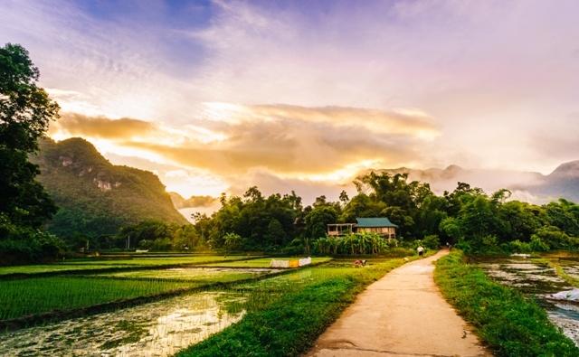 Đến Mai Châu, bạn không chỉ được ngắm nhìn khung cảnh thiên nhiên yên bình tươi đẹp mà còn được tận hưởng không khí trong lành, mát mẻ. (Ảnh: canaryresort)