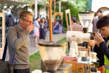 SNV: Dự án cà phê để dân hưởng lợi, xây dựng cảnh quan bền vững và không mất rừng