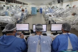 Chuyên gia Việt Nam tham gia nhóm điều tra của WHO tại Vũ Hán