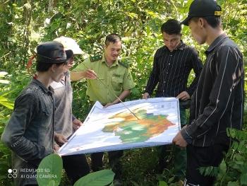 Mường Nhé (Điện Biên): Dân giàu từ những cánh rừng