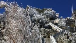 Mùng 3 Tết Nguyên đán, băng giá phủ trắng xóa đỉnh Fansipan