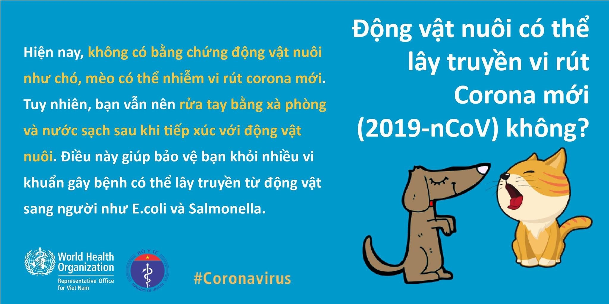 an toi thuong xuyen co giup ngua viem duong ho hap cap do virus corona moi khong