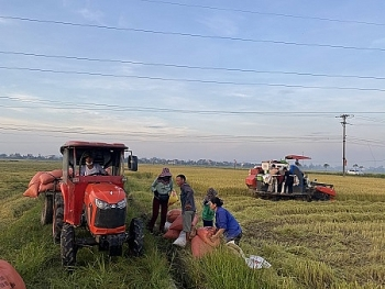 Thủ tướng Chính phủ chấp thuận UBND tỉnh Hà Tĩnh chuyển mục đích sử dụng đất