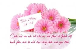 Những lời chúc 8/3 dành tặng đồng nghiệp nữ hay nhất