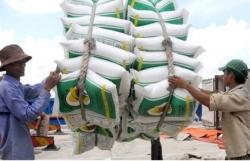 Thêm 38.000 tấn gạo được xuất khẩu