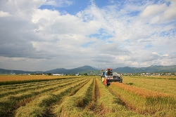 Xây dựng nông thôn mới gắn với giảm nghèo bền vững ở huyện vùng biên