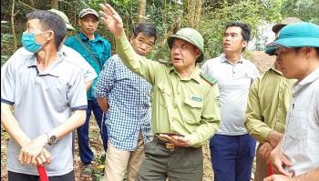 Kiểm lâm Điện Biên Đông (Điện Biên) tăng cường bảo vệ và phát triển vốn rừng
