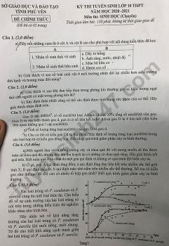 Đề thi môn Toán tuyển sinh lớp 10 vào THPT Chuyên Phú Yên