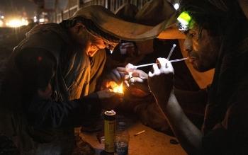 Taliban ra lệnh ngừng trồng thuốc phiện, giá nguyên liệu chế heroin bất ngờ tăng vọt