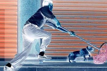 Video: Chó nhà đang thảnh thơi nằm trên bàn, bất ngờ bị hai thanh niên chích điện câu trộm