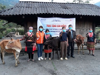 Hơn 4 tỷ đồng được World Vision Vietnam và KOICA giúp người dân Điện Biên, Quảng Ngãi phục hồi sau đại dịch COVID-19