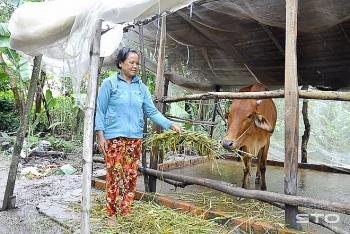 Người nghèo, người khuyết tật được miễn thu phí trong chăn nuôi