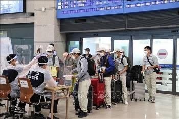 Hàn Quốc tiếp nhận lao động Việt Nam sau 1 năm gián đoạn