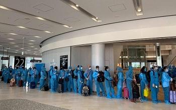 Đưa 220 công dân Việt Nam từ Nhật Bản về nước an toàn