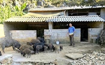Xóa đói giảm nghèo, tạo sinh kế cho người dân vùng biên Mèo Vạc (Hà Giang)
