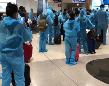 Đưa 690 công dân Việt Nam từ Úc, New Zealand và Thái Lan về nước