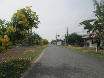 Đồng bào Khmer ở Sóc Trăng vươn lên thoát nghèo