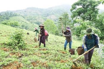 Hà Nội hỗ trợ đồng bào dân tộc thiểu số thoát nghèo ở 14 xã