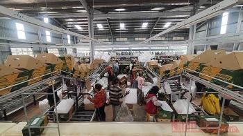 Hỗ trợ chuyển nghề cho người gốc Việt tại Campuchia