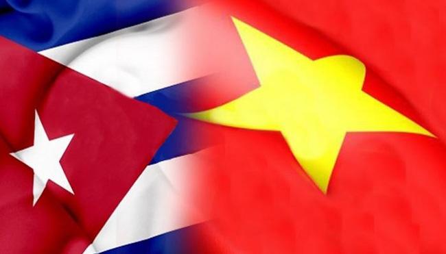 Chủ tịch Cuba ca ngợi quan hệ mẫu mực với Việt Nam  | Châu Mỹ | Vietnam+ (VietnamPlus)