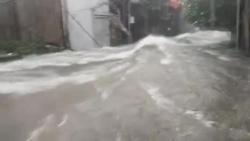 Video: Nước chảy cuồn cuộn như lũ quét trong cơn mưa lớn ở Nghệ An