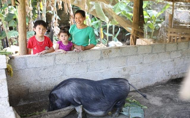 ChildFund Việt Nam triển khai nhiều hoạt động góp phần nâng cao đời sống của người dân Cao Bằng