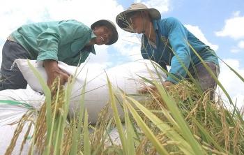 UNDP: Thành tựu giảm nghèo của Việt Nam rất ấn tượng và được quốc tế công nhận