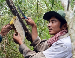 gac keo ong muoi ba khia duoc cong nhan di san van hoa phi vat the