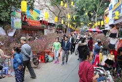 Hà Nội cấm nhiều tuyến đường để tổ chức Chợ hoa Xuân 2020
