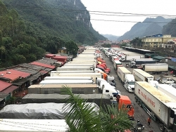 Xuất khẩu sang Trung Quốc khởi sắc, đạt gần 13 tỷ USD trong 4 tháng