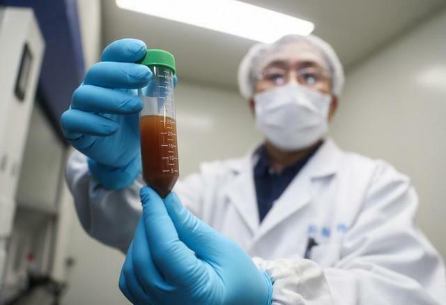 vaccine covid 19 thu nghiem dau tien tren dong vat da sinh khang the