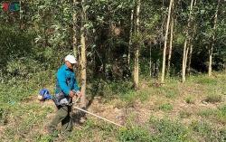 Hạn hán gay gắt ở Bình Thuận, nguy cơ cháy rừng cao ở Đắk Lắk