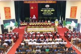 Bầu trực tiếp Bí thư Huyện ủy tại Yên Bái, Long An và Phú Yên