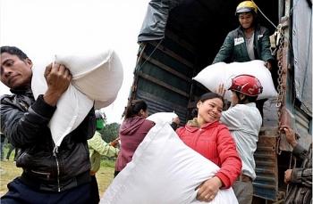 Cấp hơn 4.000 tấn gạo hỗ trợ người dân tại 3 tỉnh