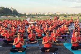 Hơn 1.000 người tham gia Ngày quốc tế Yoga tại tỉnh Vĩnh Phúc