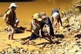 Năm 2050 chấm dứt lao động trẻ em vì có chế tài mạnh?