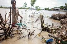Cà Mau: Huy động lực lượng chống sạt lở đê biển Tây