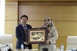 Quan hệ Việt Nam – Indonesia: Thống nhất trong đa dạng