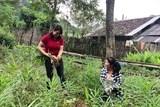 PFG gieo mầm xanh hy vọng ở Cao Bằng