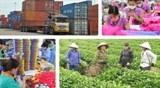 """Nguyên Phó Thủ tướng Vũ Khoan: Việt Nam phải chọn được """"gen trội"""" để phát triển kinh tế"""