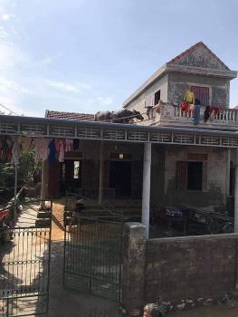 Giải cứu thành công 2 chú trâu mắc kẹt trên nóc nhà do lũ lớn ở Quảng Bình
