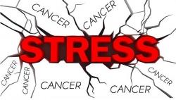 nhung tac dong tieu cuc len nao bo khi stress