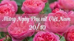 loi chuc 2010 hay y nghia nhat cho ngay phu nu viet nam