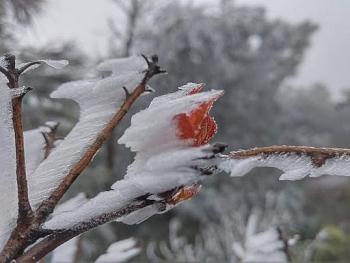 Miền Bắc chuẩn bị đón đợt rét đậm mới, mưa tuyết tiếp tục xuất hiện