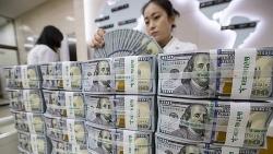 Tỷ giá ngoại tệ hôm nay (4/8): Đồng USD quay đầu giảm, NDT tăng mạnh