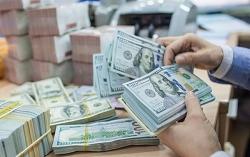 Tỷ giá ngoại tệ hôm nay (21/11): USD, Euro