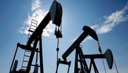 Giá xăng dầu hôm nay (20/11): Dầu thô chưa thể đi lên