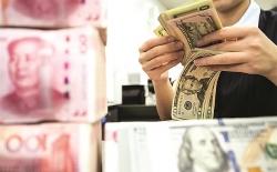 Tỷ giá ngoại tệ hôm nay (3/9): USD, Euro, Yên đồng loạt đứng yên